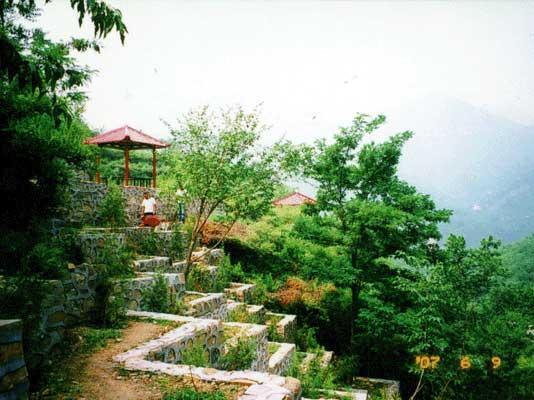 水泉沟纪念林景色