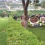 桃峰陵园艺术墓型8