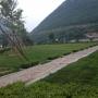 桃峰陵园园区环境