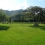 桃峰陵园草坪