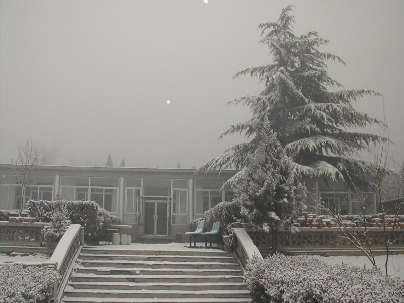 九里山公墓办公区雪景