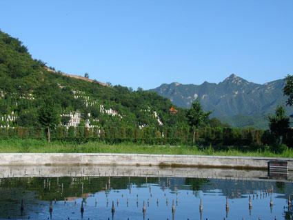 天山陵园青山绿水