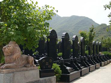 天山陵园墓区景观