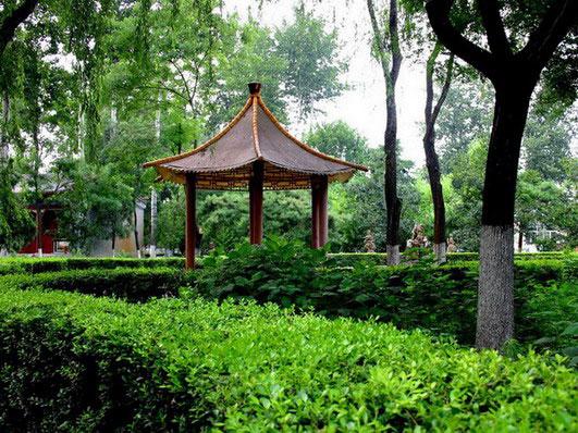 潮白陵园绿化