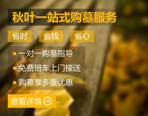 秋叶网小编教你怎样买det365中国网_det365欧洲_det365线路检测中心省钱
