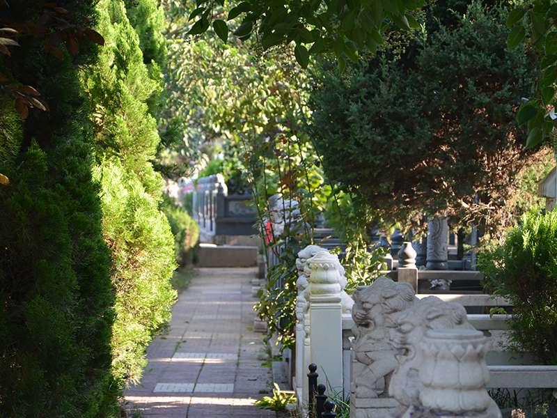 汉陵墓园墓区环境
