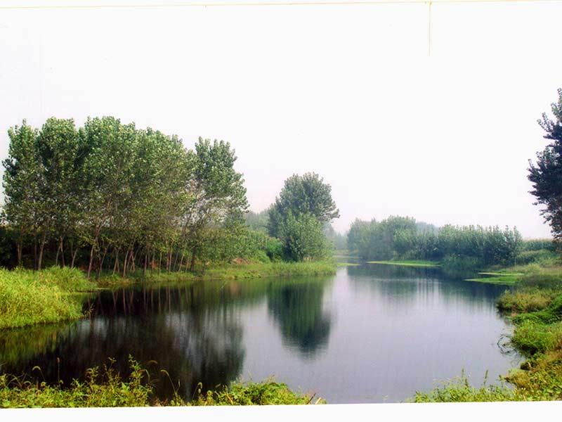 高静园景观