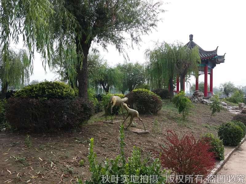 天福陵园景观