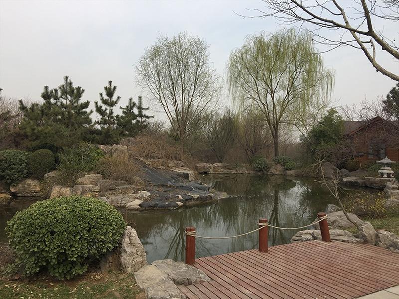 福寿园环境