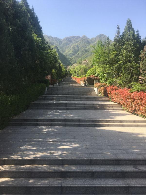 九龙山神道