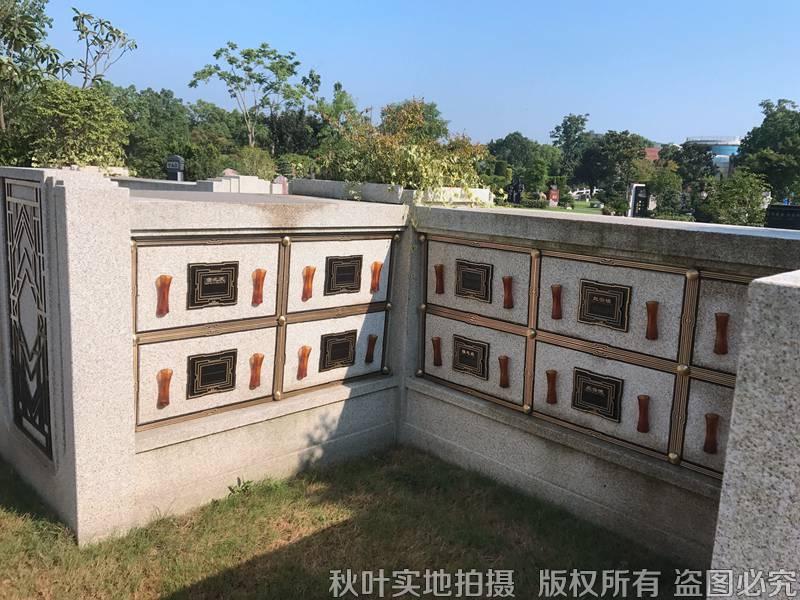 文星园三区壁葬