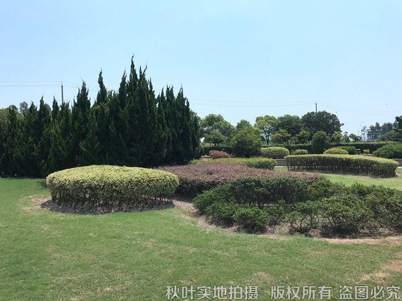 汇龙园园区景观