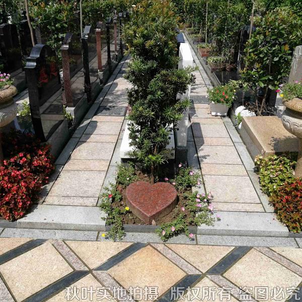 永生苑植树葬