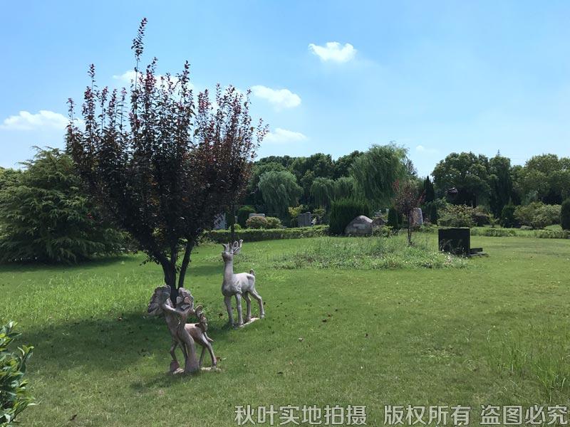 松隐山庄园区景观