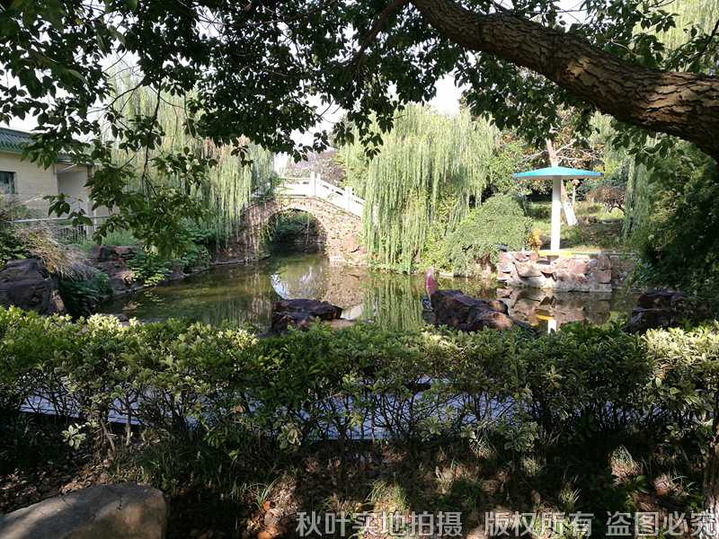 乐遥园陵园环境 (1)