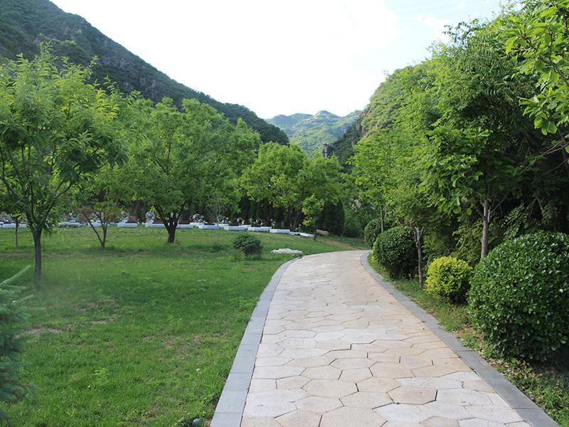 九公山長城紀念林